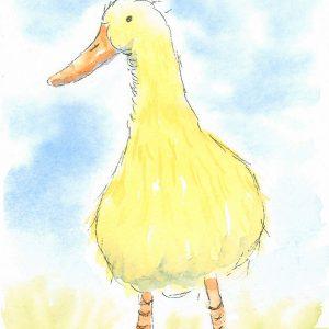 Little duck Farm yard greetings card