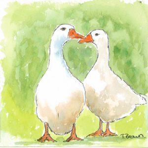 """Geese "" Square Farmyard drinks coaster"