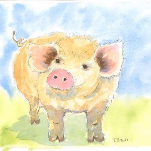 """Little pig "" Square Farmyard drinks coaster"