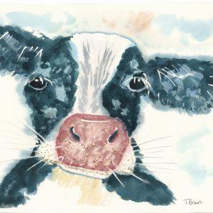 """Little cow "" Square Farm yard drinks coaster"