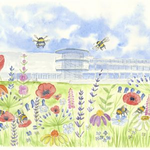 Bexhill Bees Greetings card